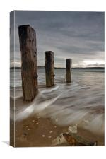 Groyne on a North Devon Beach, Canvas Print