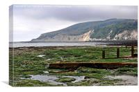 Sea weed & Beachy Head in the distance., Canvas Print