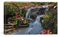 Fall waters, autumn leaves swirl in this pictures, Canvas Print