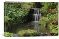 Garden falls, a small but picturesque garden wate, Canvas Print