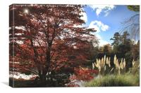 This autumn lake looks great , Canvas Print