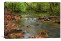 Fall and water, Canvas Print