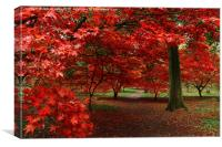 A sea of red, Canvas Print