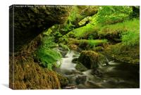 Exmoor stream, Canvas Print
