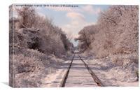Rails through wonderland, Canvas Print