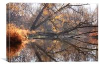 Natures Mirror, Canvas Print