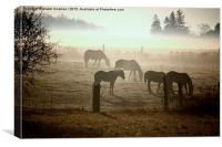 Horses In The Mist, Canvas Print