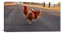 Chicken Dance, Canvas Print
