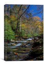 Autumn Flow, Canvas Print