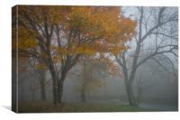 Misty Gold, Canvas Print