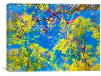 Spring Is Here! , Canvas Print