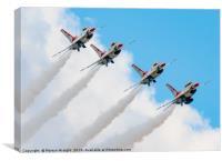 USAF Thunderbirds , Canvas Print