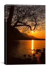 Sunset Silhouette, Canvas Print