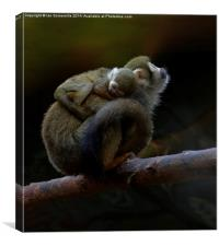 Hold tight little one, Canvas Print