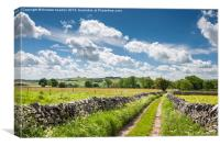 Summer in the Peak District, Canvas Print