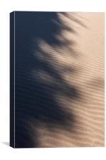 Shadows on the sand, Canvas Print