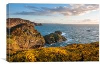 Pembrokeshire coast in spring, Canvas Print
