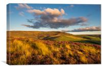 Warm summer sunshine on moors above Hayfield, Canvas Print