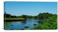 the  river spey, Canvas Print