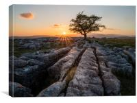 Winskill Stones, Yorkshire Dales, Canvas Print