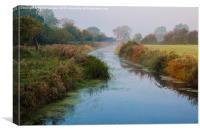 Misty Morning , Canvas Print