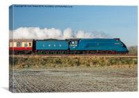 LNER Class A4 4464 Bittern Steam Locomotive, Canvas Print