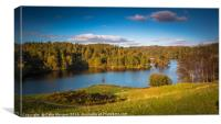 Tarn Hows in the Lake District National Park, Canvas Print