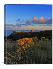 Dunnottar Castle at Sunset, Canvas Print