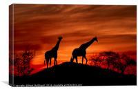 Giraffe Silhouette , Canvas Print