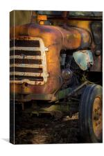 Old Rusty, Canvas Print