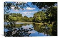 Un étang en Périgord Vert, Dordogne , Canvas Print