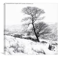 Bronte tree in the snow, Canvas Print