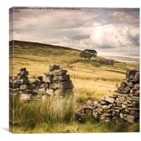 Withens Walls, Canvas Print