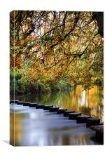 Stepping Stones, Canvas Print