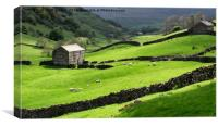 Evening light at Angram in Swaledale , Canvas Print