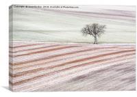 Winter Mosaic, Canvas Print