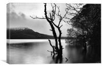 Loch Rannoch at Dusk, Canvas Print