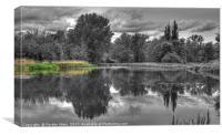 Jezioro Powsinkowskie Reflections, Canvas Print