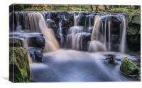Nelly Ayre Foss in Autumn, Canvas Print