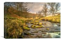 River Derwent, Canvas Print