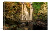 Valley of Desolation , Canvas Print