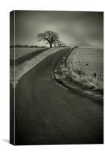 Open Road, Canvas Print
