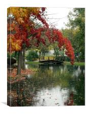 Fall Color with Bridge 2