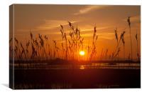 sunrise at Cae Glas