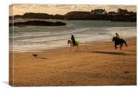 Horses on the beach, Canvas Print