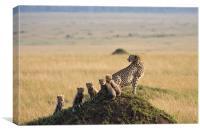 Cheetah family, Canvas Print