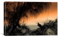 Home to Roost. A Snowy Egret (Egretta thula), Canvas Print