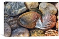 Feather and Pebbles, Canvas Print