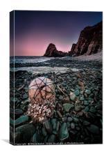 Beach buoy, Canvas Print