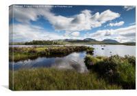 Ranoch Moor Scotland, Canvas Print